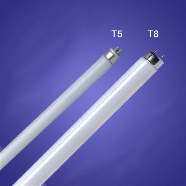 Verschil T5 T8 Verlichting